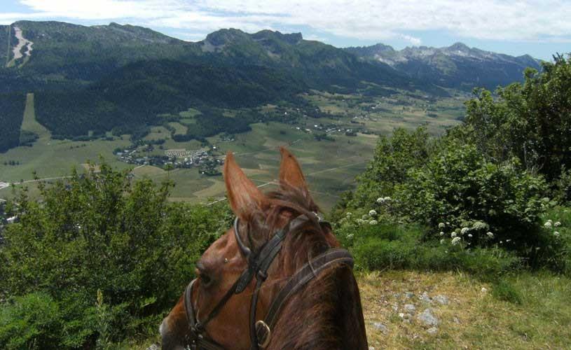 Découvrez le plaisir de monter à cheval dans le Vercors